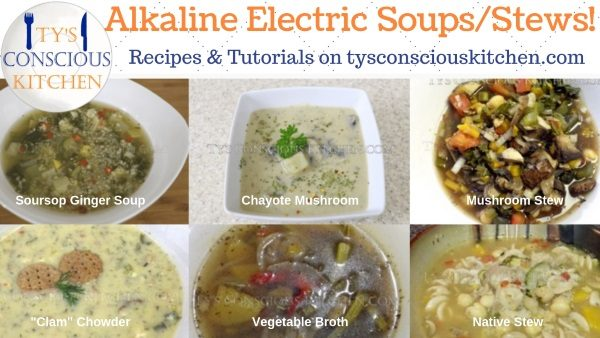 Tys Conscious Kitchen Alkaline Electric Soups Stews