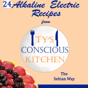 Vol. 3 Dessert Edition: eBook: Alkaline Electric Recipes from Ty's Conscious Kitchen The Sebian Way
