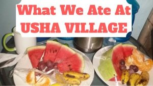 What We Ate At Usha Village