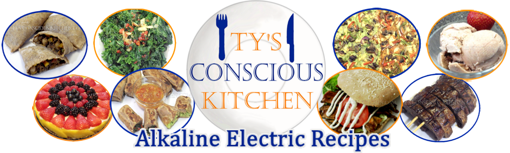 Ty's Conscious Kitchen Alkaline Electric Recipes